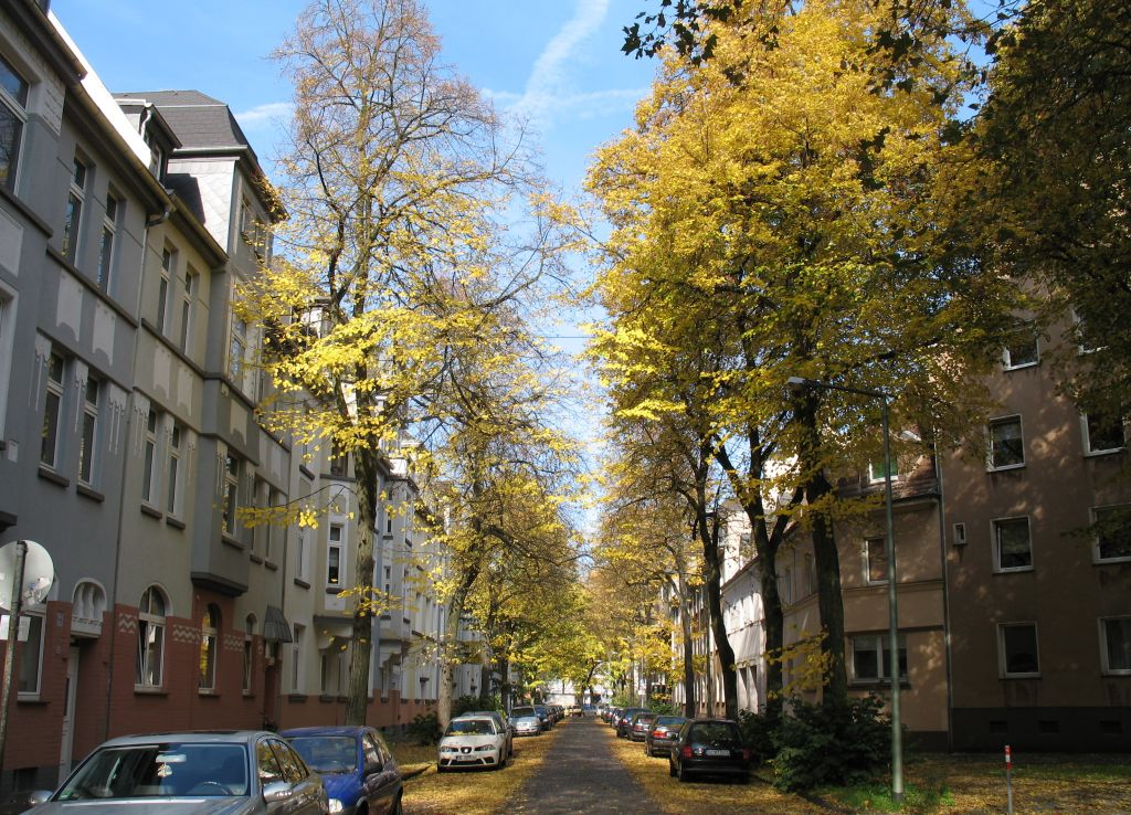 HerbstLicht1