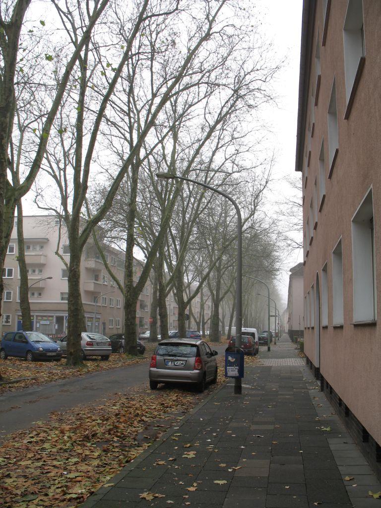 November-2011-IMG_7831