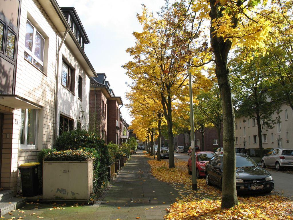 Herbstlicht9