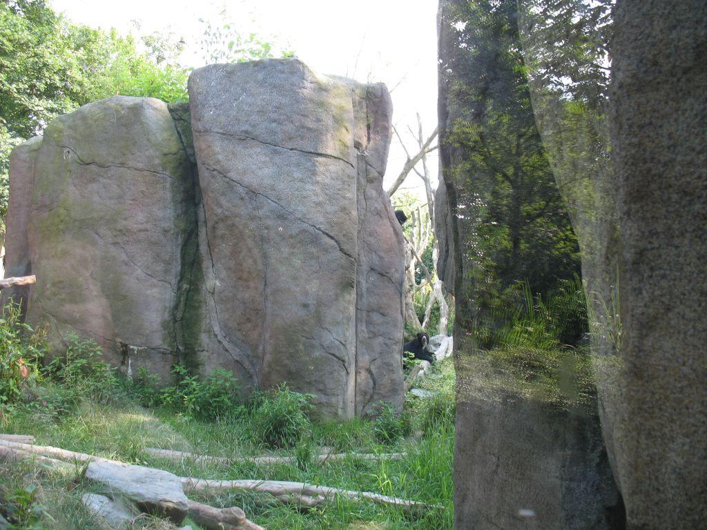 zoo15-09