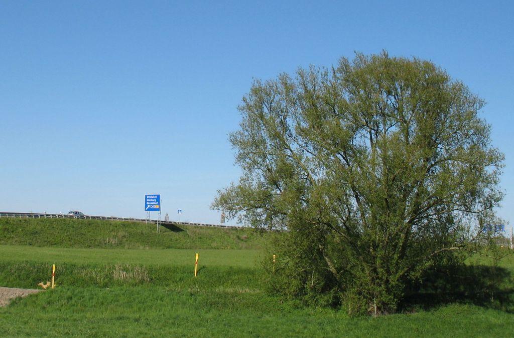 LandschaftKultur07