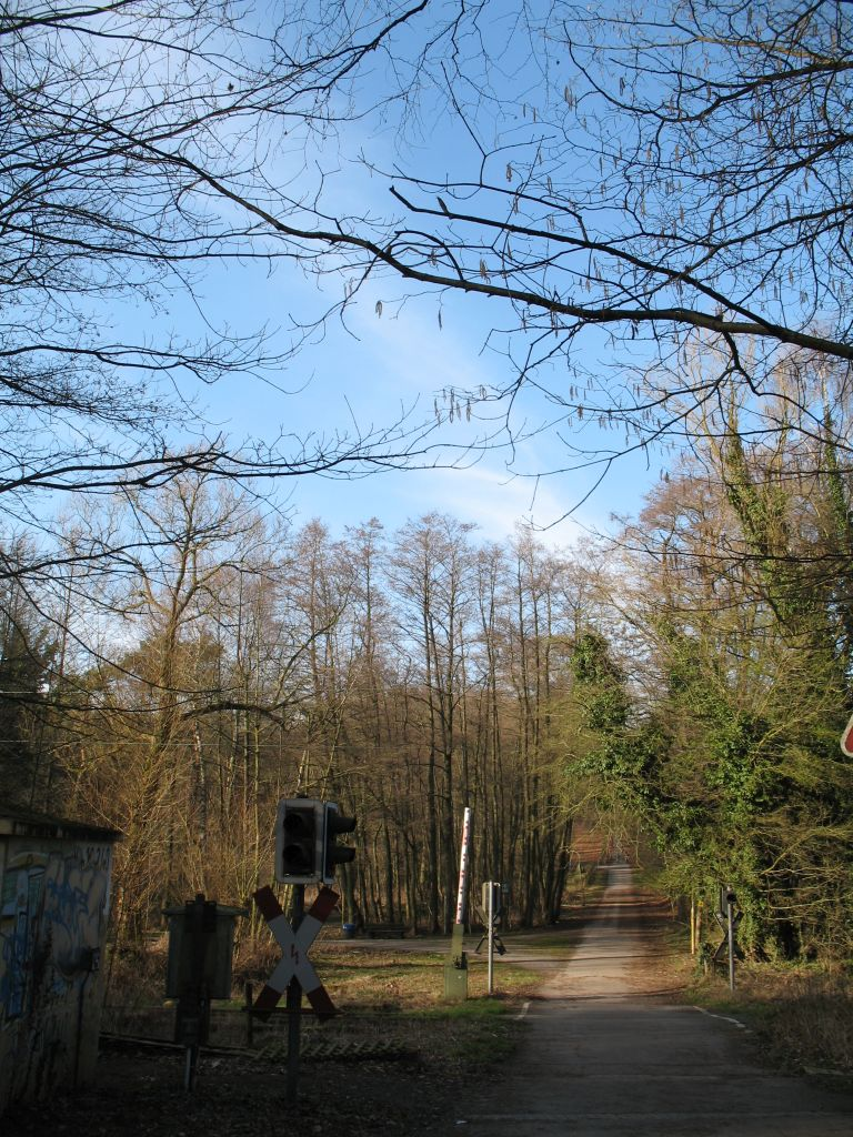 Wald-14-03-C
