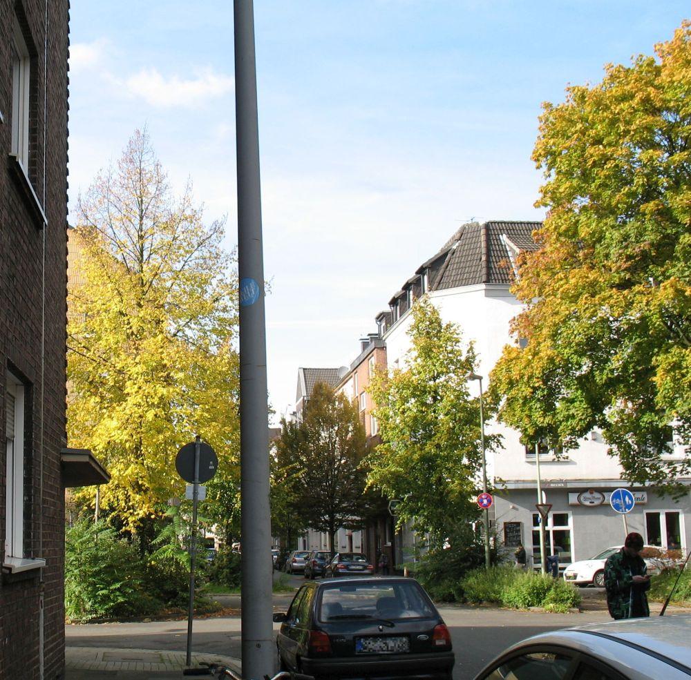 Herbstlicht11