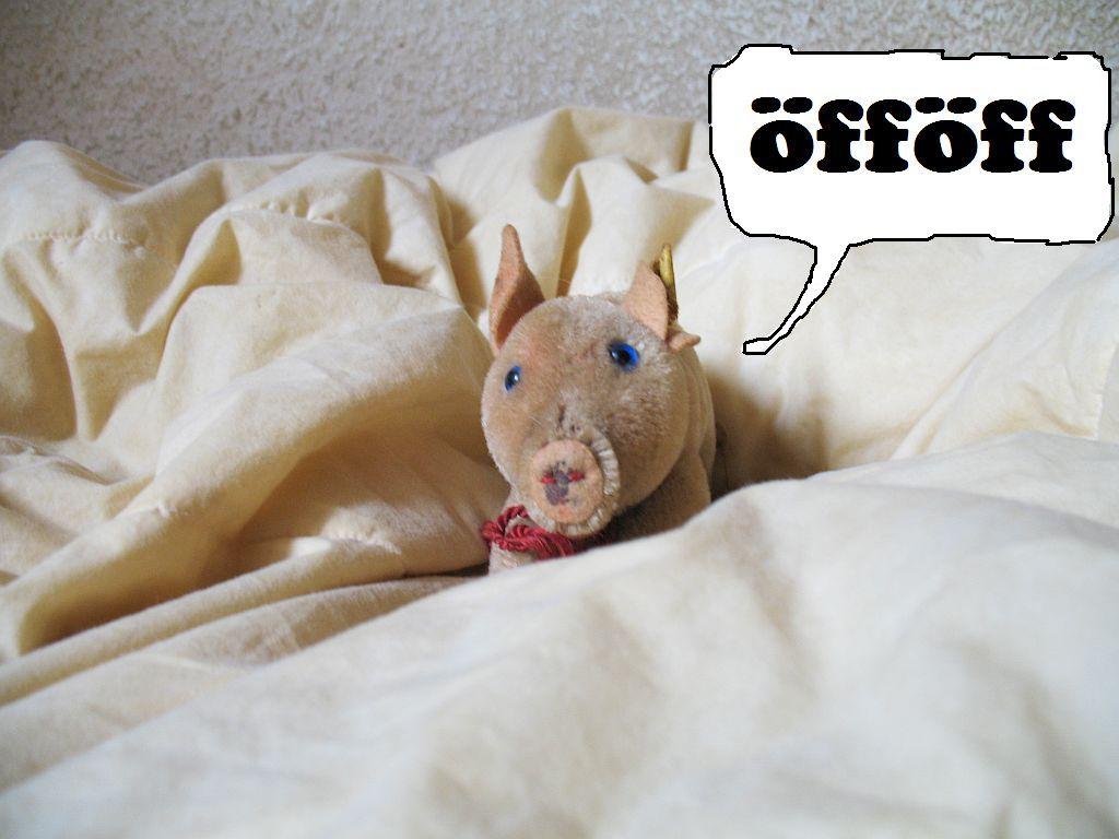 bernd-schweinchenoeffoeff